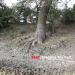 Shed - Shedding The Past (Ostgut Ton, 2008)