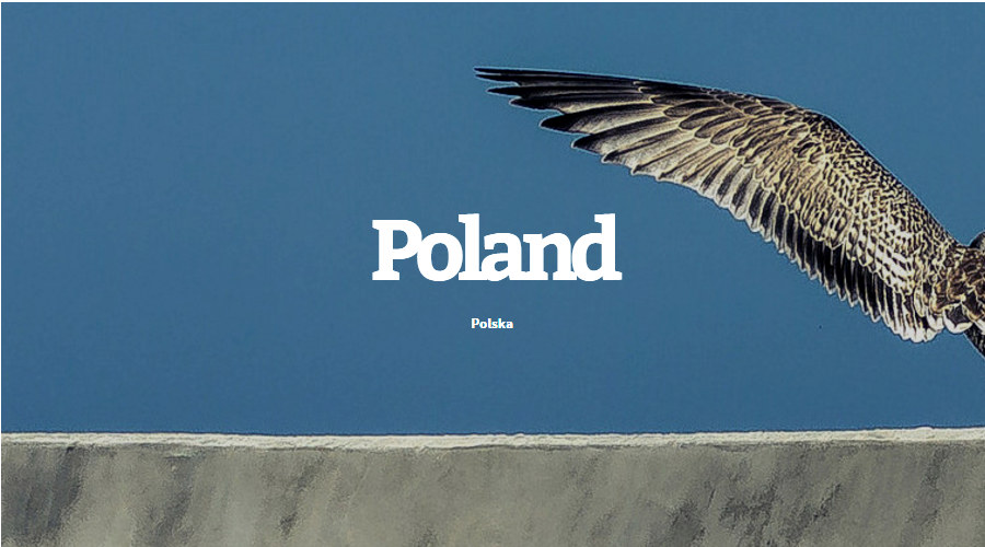 30 Polskich płyt z 2015 roku