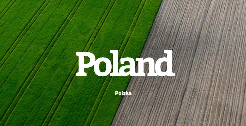 30 polskich płyt z 2016 roku