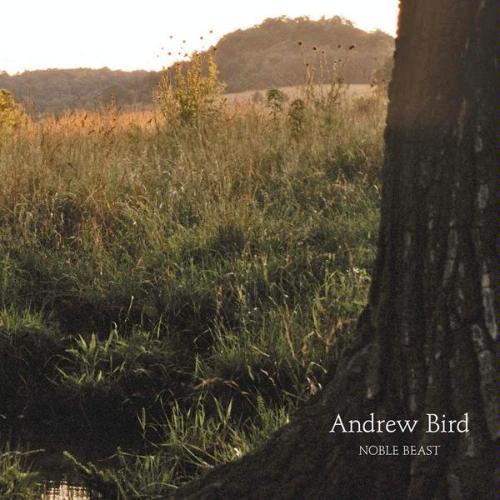 Andrew Bird - Noble Beast (Fat Possum, 2009)