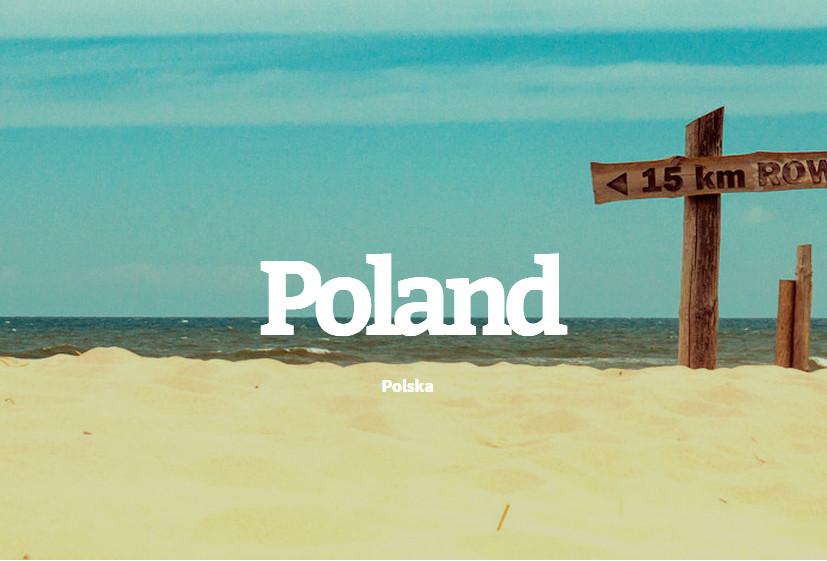 30 polskich płyt 2014 roku