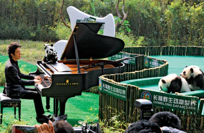 Wywiad: Yundi Li